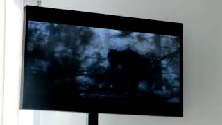 Prix Ars Electronica 2012 - Computer Animation / Film / VFX - AoD - Rise of the Planet of the Apes