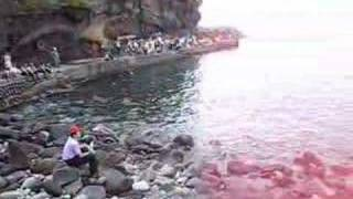 I landed on a small islet  彭佳嶼 Pong Jia Yu of Taiwan
