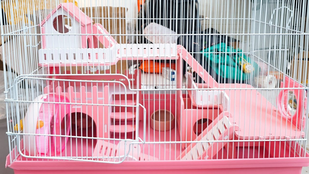 Cleaning Hamster Cage And Setup A New Cage For My Hamster - Hamster's Island