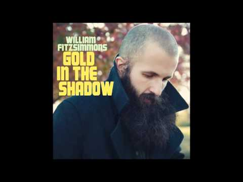 William Fitzsimmons - Gold in the shadow (2011)