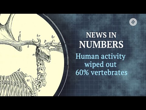 Vertebrates wiped out by human activity | News in Numbers