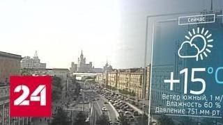 В Москву возвращается тепло - Россия 24