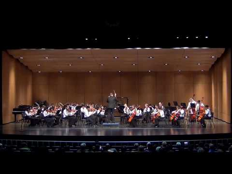 DetroitMYS, Swan Lake Act II, No. 10 by P. I. Tchaikovsky,  arr.  Michael Hopkins, String Orchestra
