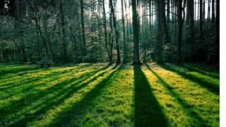 sin lagrimas - musica cristiana ranchera - ramon gonzalez