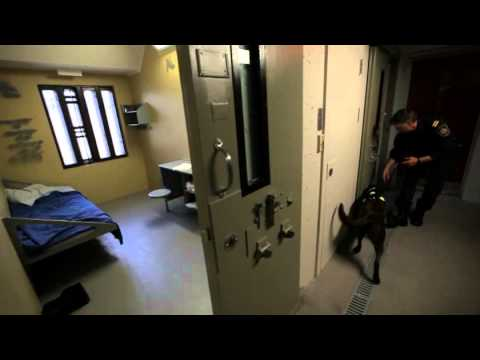 Le pénitencier de Donnacona : Claude Amyot, maitre chien - QC12