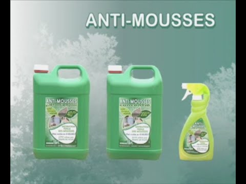 ecogene - anti-mousses - youtube