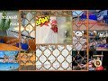 ПОДПИСКА РЫБАЛКА УДОЧКА СНАСТИ рыбалка видео youtube рыба ловля рыба клев видео ловля донка лов ютуб