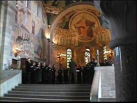 The Choir Of The Catholic Church Our Lady (Denmark)