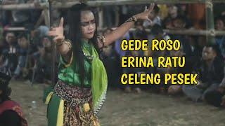 Download Gede roso - Solah Terbaik Erina Ratu  Celeng Pesek Jaranan Nogo Pertolo - Ponorogo