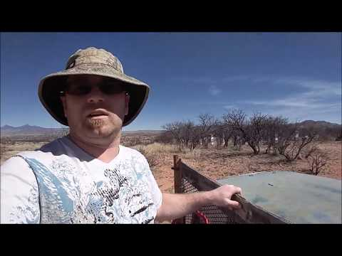 Arizona Desert Bees Part 2 - March 2017 thumbnail