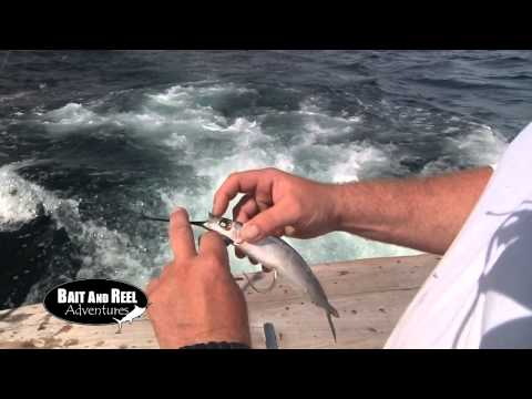Bait and Reel Adventures:  Mel and Monica's Yellow Fin Tuna - Ocean City, MD