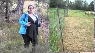 Clôture de 1,8 m, la double clôture, et les attaques de jours