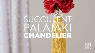 Succulent Chandelier