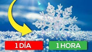 ¿Cuánto tarda en caer un copo de nieve al suelo? (FoV)