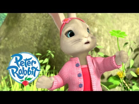 Peter Rabbit - The Rabbits Have A Lucky Day | Cartoons For Kids
