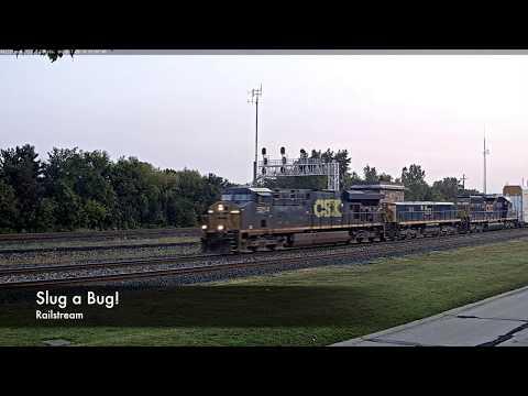 Slug a Bug!