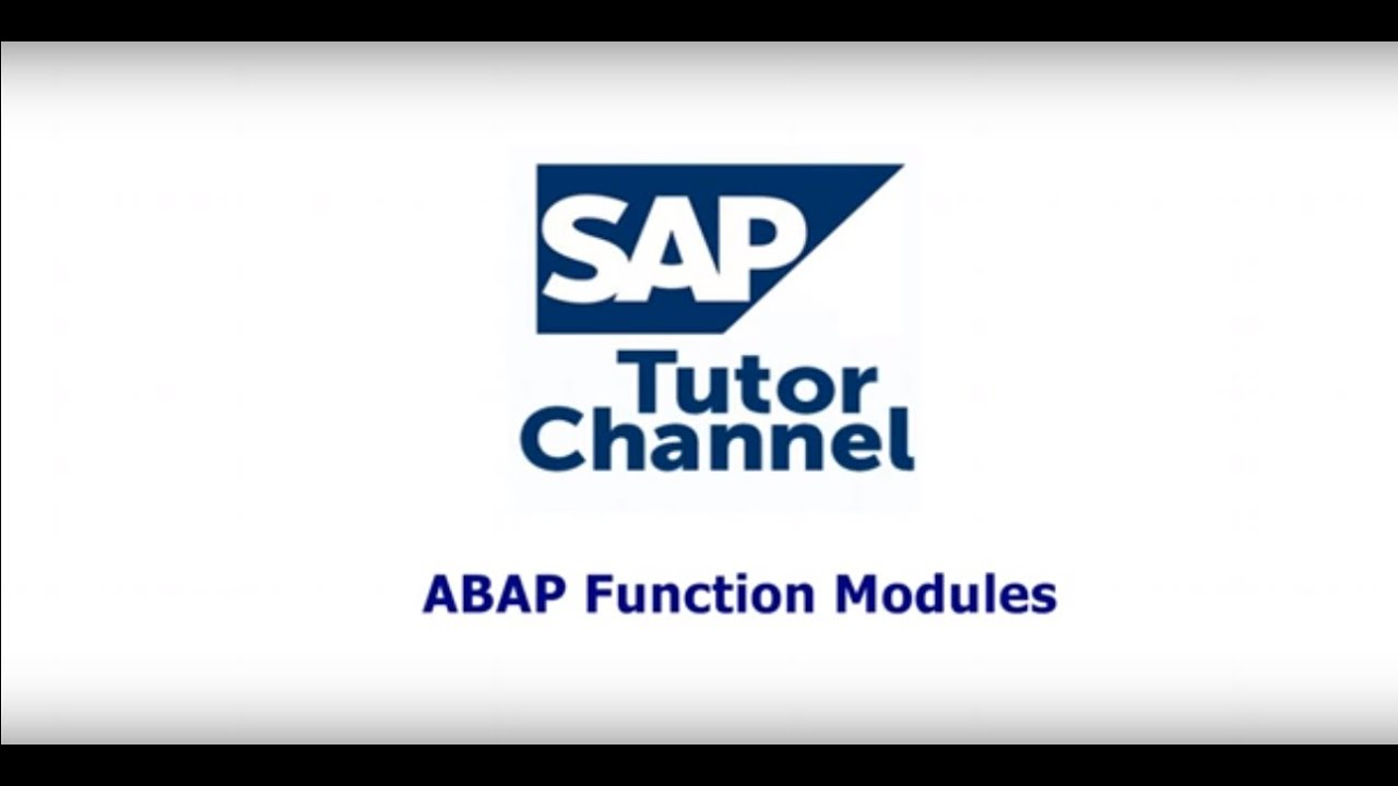 ABAP function module