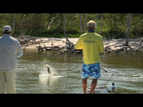 Fishing for Snook and Redfish in Florida Everglades National Park