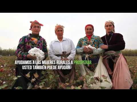 Mujeres rurales: agentes de cambio que luchan contra la pobreza, el hambre y el cambio clim?tico  - 21:22-2017 / 10 / 12