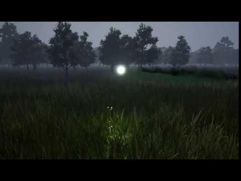 Zone-17 :: Anomaly Test (Firefly) 001
