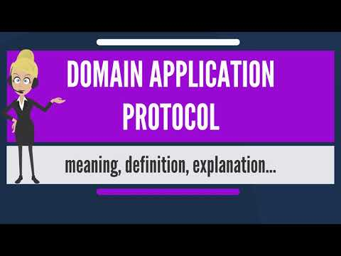 What is DOMAIN APPLICATION PROTOCOL? What does DOMAIN APPLICATION PROTOCOL mean?