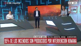 Argentina bajo fuego: Habla Elisabeth Mohle en Hagan Algo