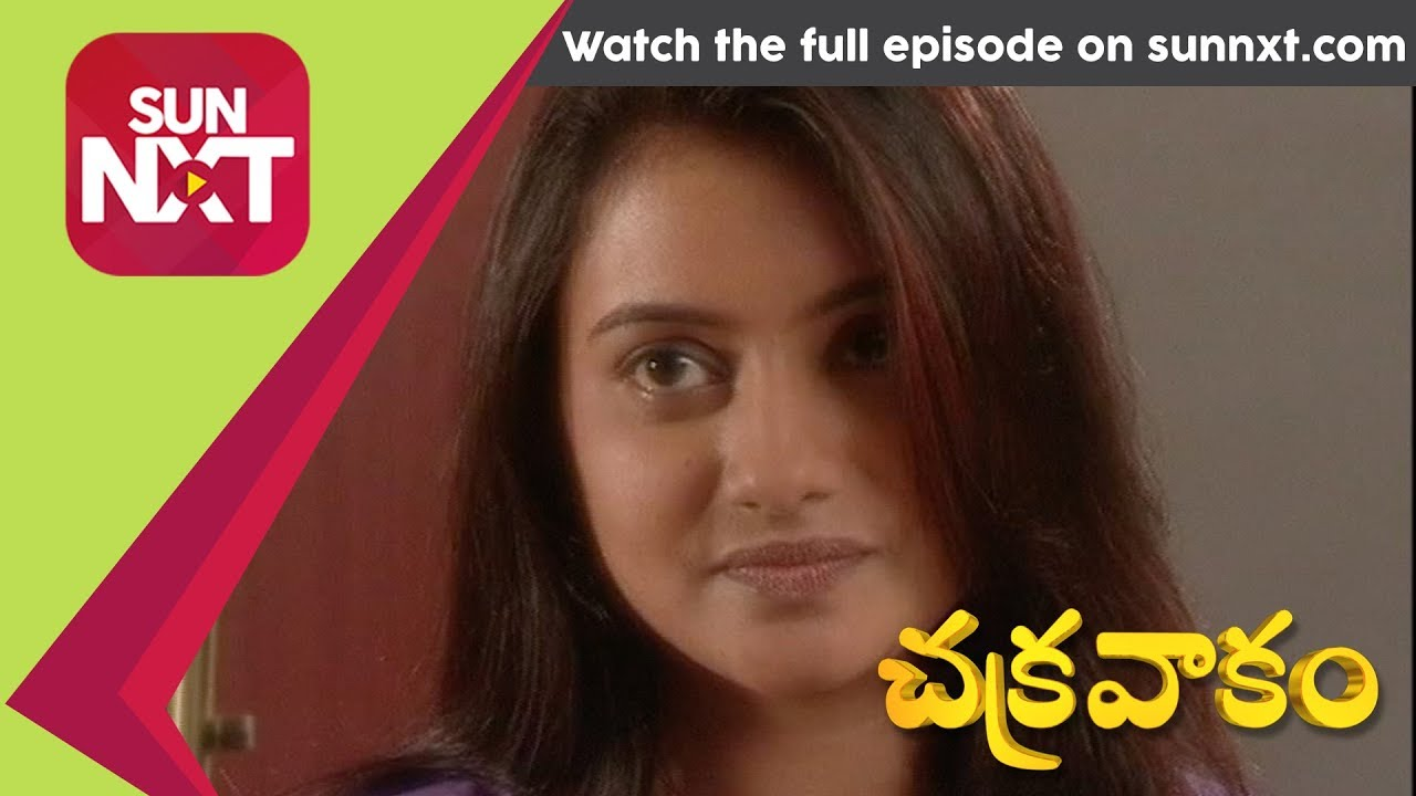 Gemini tv chakravakam serial today episode