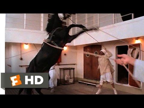 The Black Stallion (1/11) Movie CLIP - Alec Meets the Stallion (1979) HD