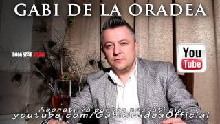 Gabi de la Oradea - Tu mi-ai aparut in drum ( Oficial Audio )