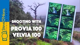 Film Photography - Comparing Provia and Velvia 100 on a Landscape Shoot