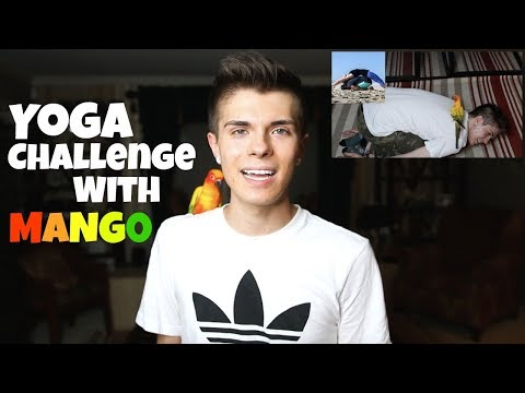Yoga Challenge With My Bird!? feat. Mango