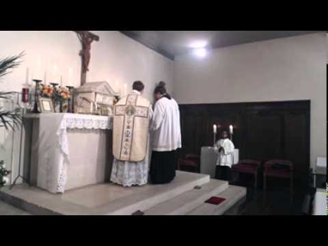 Assumption of Mary 15 august 2014, latin mass