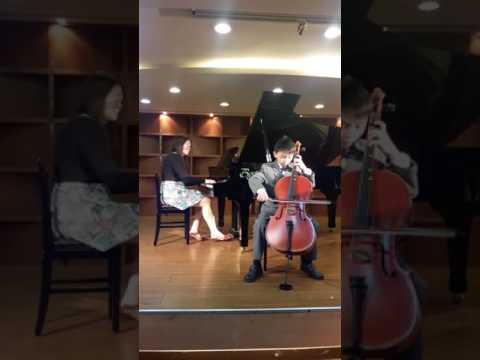 月亮代表我的心大提琴演奏