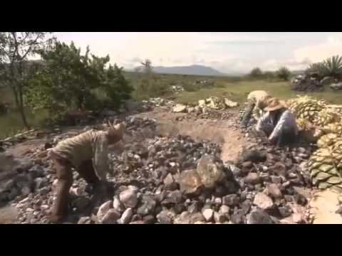 Mezcal: Documentaire Arte à Oaxaca