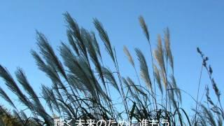 ナオト・インティライミ - Brave