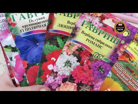 Покупка семян. Часть 2 Цветы  (дача 2019)
