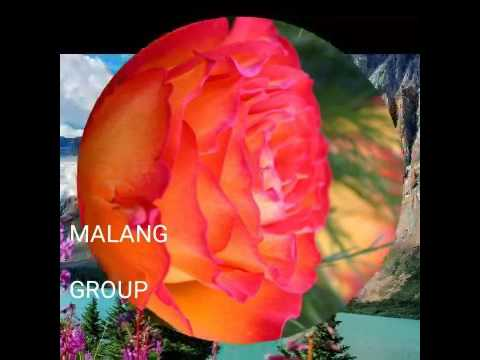 Malang Group