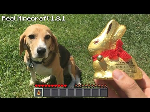 Real Life Minecraft - EASTER PUPPIES