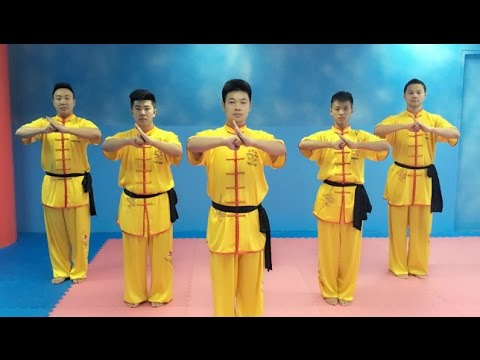 fd60c4414 The real men of Tai Chi from Shaolin Kung Fu Dubai - YouTube