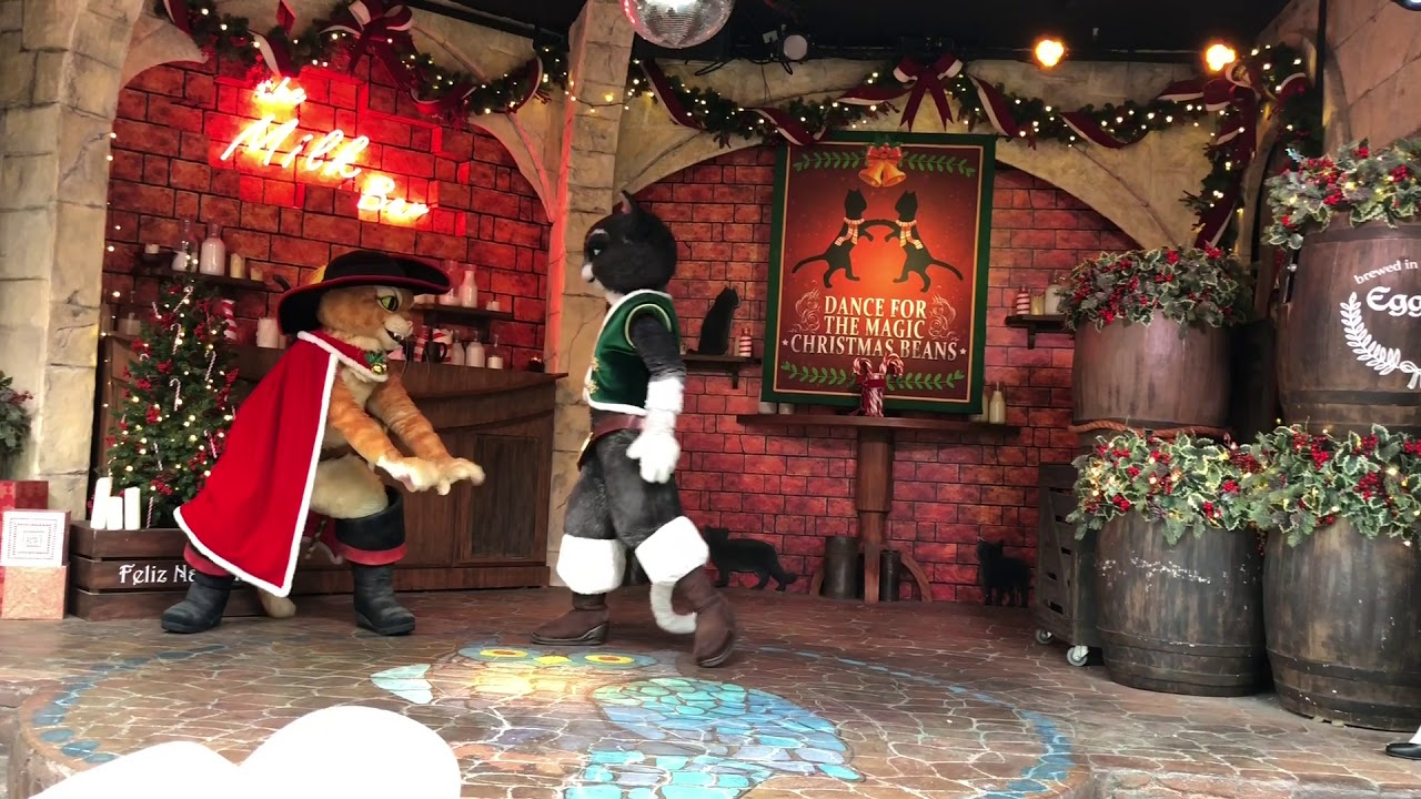 Image result for Dance For The Magic Christmas Beans