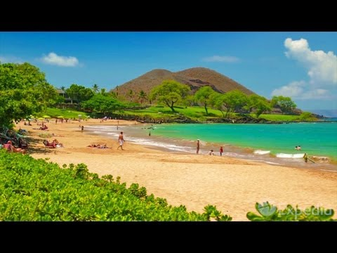 Maui - City Video Guide