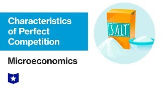 Characteristics of Perfect Competition | Microeconomics