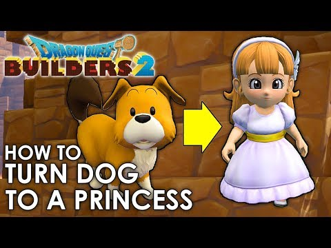 Dragon Quest Builders 2 - How To Transform The Dog Into A Princess! (Guide)