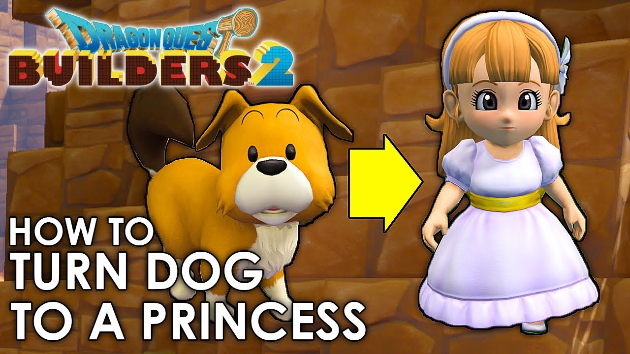Dragon Quest Builders 2 How To Transform The Dog Into A Princess Guide Youtube