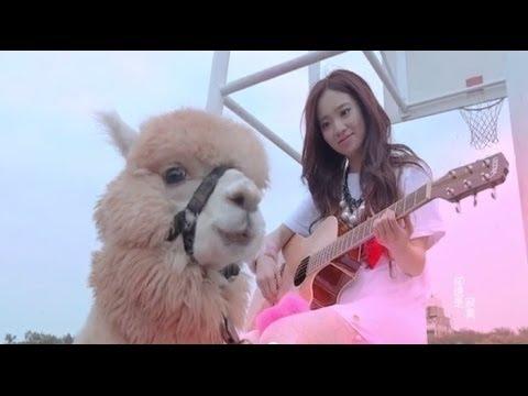 全民寶貝Kimberley陳芳語《分手說愛你》 Official MV (HD)