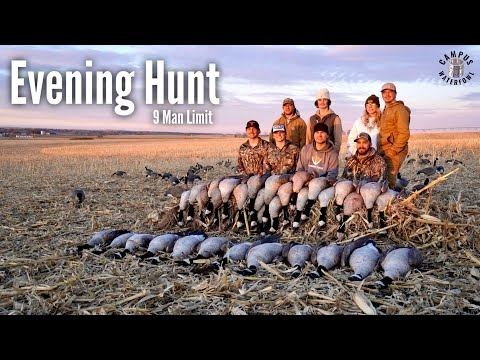 9 Man Limit + ONE Legged Goose??