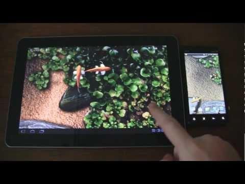 3d Koi Pond Live Wallpaper Free Download For Android Sfondo Animato Carpe Koi Grat App Su Google Play