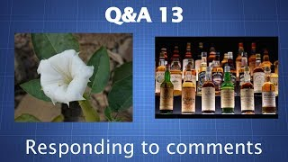 Q&A 13 – Alcohol's Deadly Nature, MDMA vs. Methamphetamine (And More)
