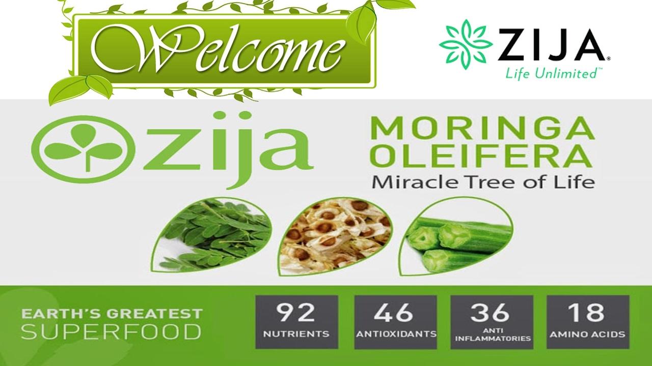Ectomorph diet plan sample