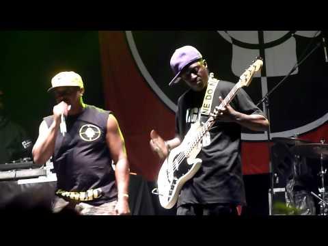 Public Enemy live Flavor Flav bass solo Electric Picnic Festival